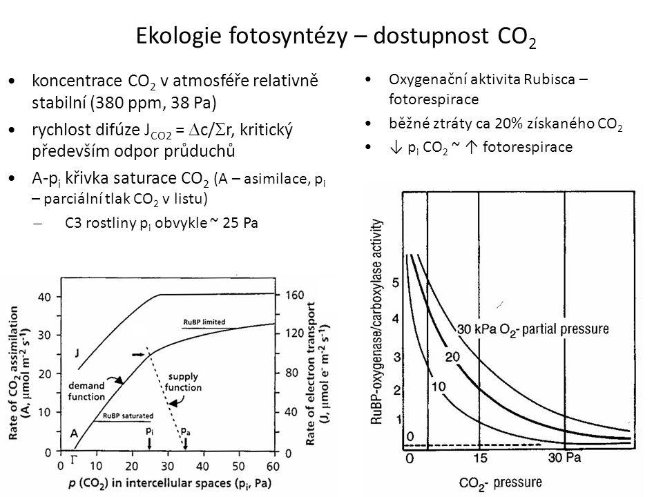 Ekologie fotosyntézy – dostupnost CO 2 koncentrace CO 2 v atmosféře relativně stabilní (380 ppm, 38 Pa) rychlost difúze J CO2 =  c/  r, kritický pře