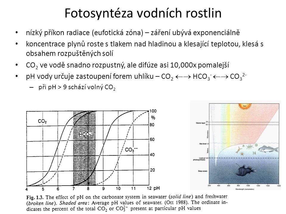 Fotosyntéza vodních rostlin nízký příkon radiace (eufotická zóna) – záření ubývá exponenciálně koncentrace plynů roste s tlakem nad hladinou a klesají