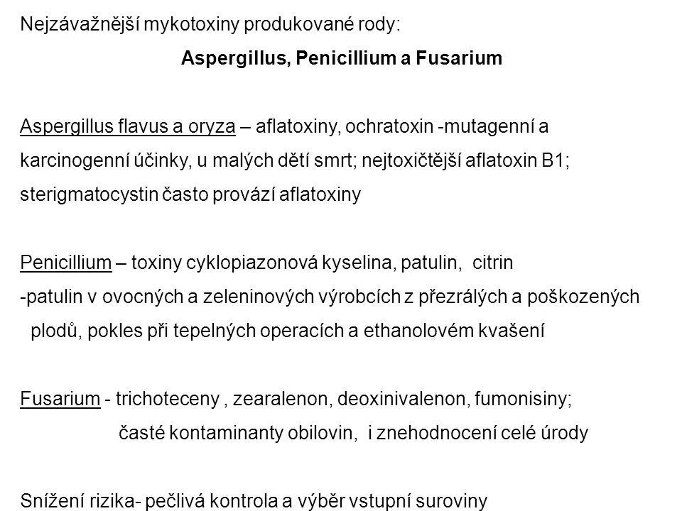 Nejzávažnější mykotoxiny produkované rody: Aspergillus, Penicillium a Fusarium Aspergillus flavus a oryza – aflatoxiny, ochratoxin -mutagenní a karcin