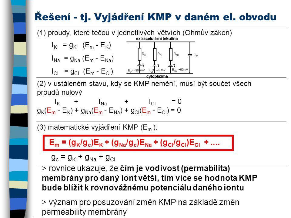 Řešení - tj. Vyjádření KMP v daném el. obvodu (1) proudy, které tečou v jednotlivých větvích (Ohmův zákon) I K = g K (E m - E K ) I Na = g Na (E m - E