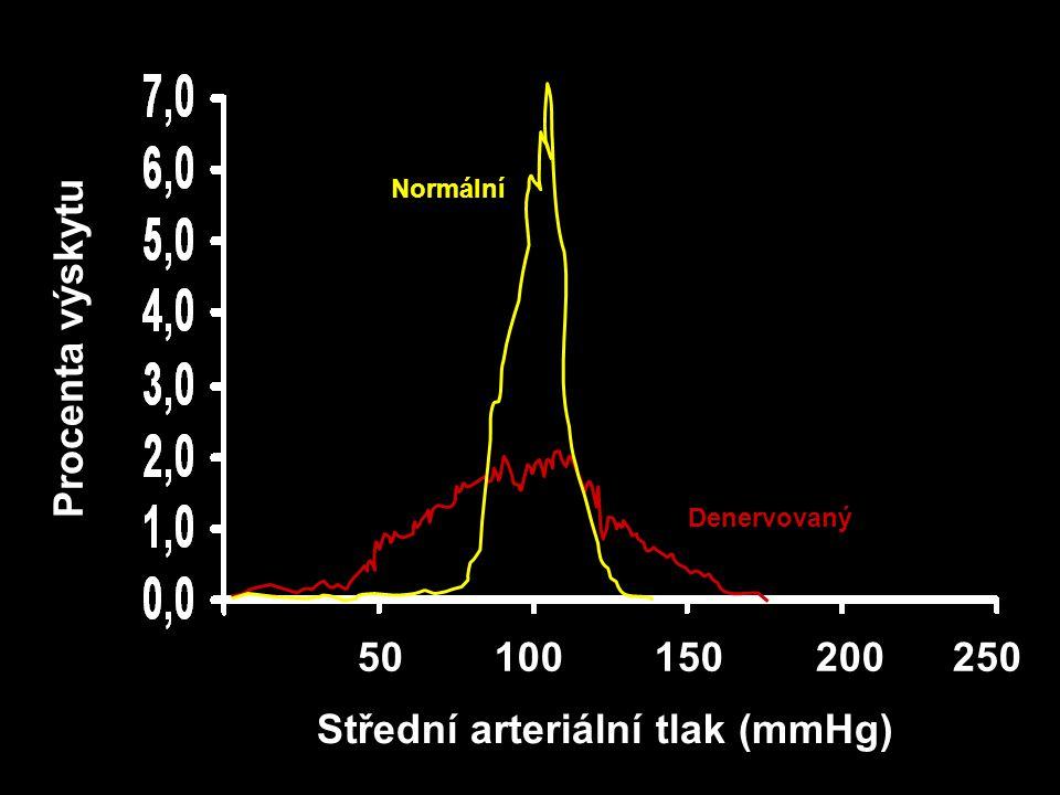 Počáteční vzestup PCR Počáteční vzestup OECT Nervové nebo hormonální podněty OECT Vazokonstrikční účinky Retence sodíku a vody v ledvinách Efektivní krevní objem Srdeční výdej Perfůze tkání Kapacita cévního řečiště Vzestup PCR Autoregulační úprava rezistence ARTERIÁLNÍ KREVNÍ TLAK