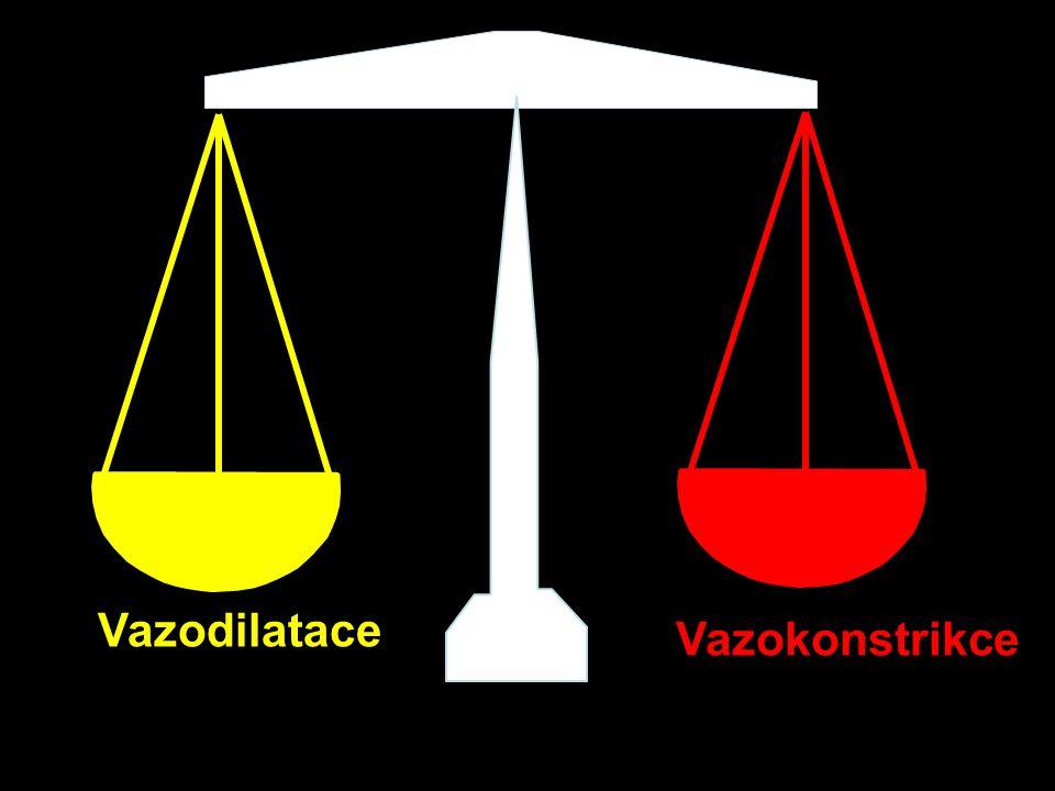 Na + lumen intersticium Primární hyperaldosteronismus K+K+ 2K + Na + 3Na + Cl -