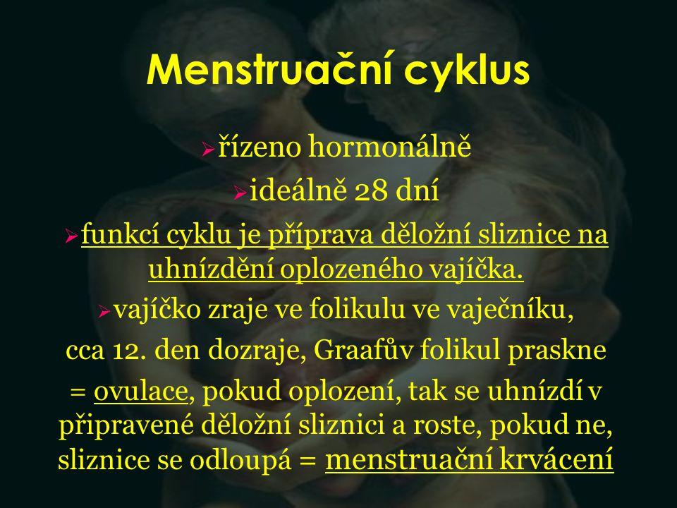 Menstruační cyklus  řízeno hormonálně  ideálně 28 dní  funkcí cyklu je příprava děložní sliznice na uhnízdění oplozeného vajíčka.