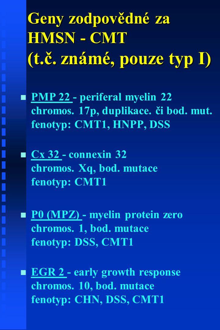 Geny zodpovědné za HMSN - CMT (t.č.známé, pouze typ I) n n PMP 22 - periferal myelin 22 chromos.