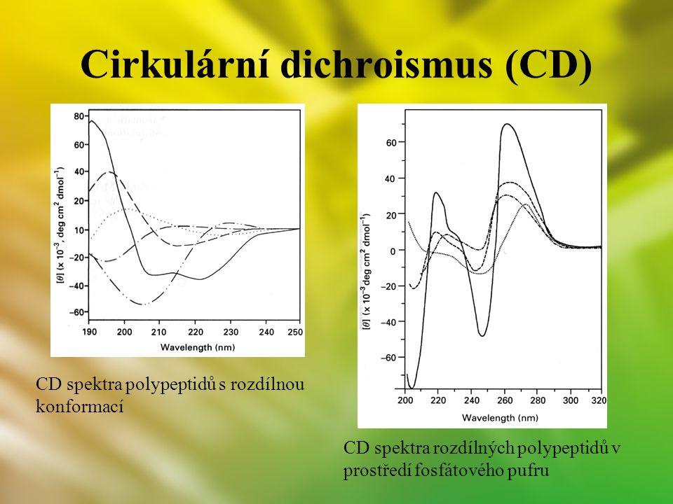 Cirkulární dichroismus (CD) CD spektra polypeptidů s rozdílnou konformací CD spektra rozdílných polypeptidů v prostředí fosfátového pufru