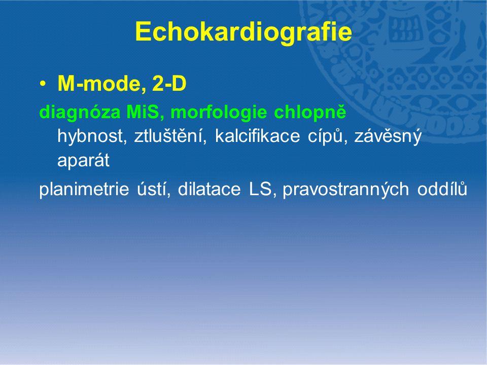 Echokardiografie M-mode, 2-D diagnóza MiS, morfologie chlopně hybnost, ztluštění, kalcifikace cípů, závěsný aparát planimetrie ústí, dilatace LS, prav
