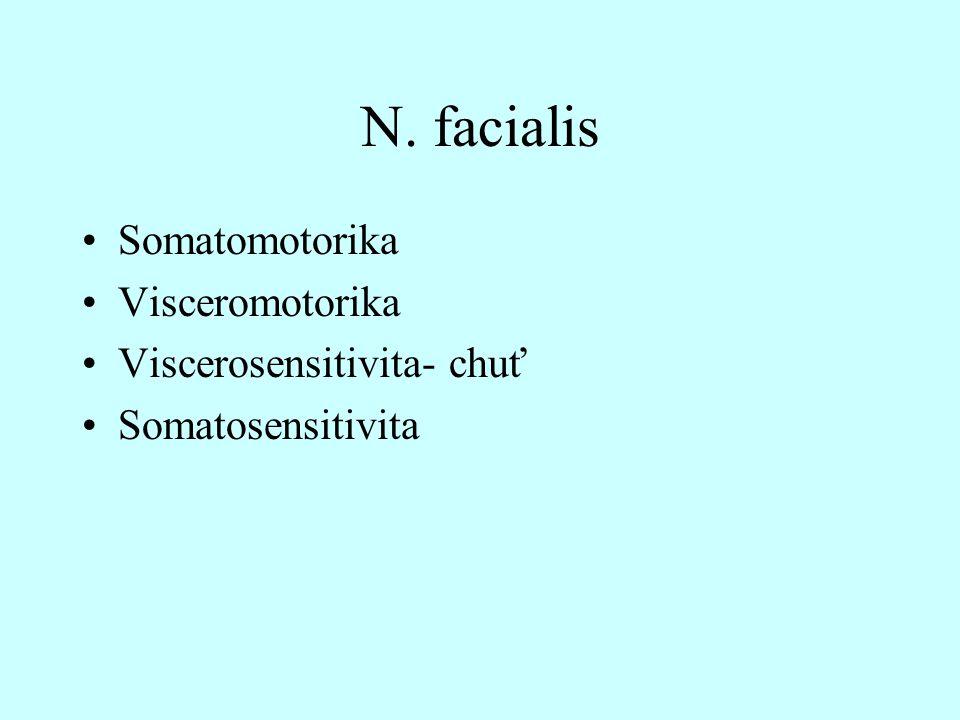 N. facialis Somatomotorika Visceromotorika Viscerosensitivita- chuť Somatosensitivita
