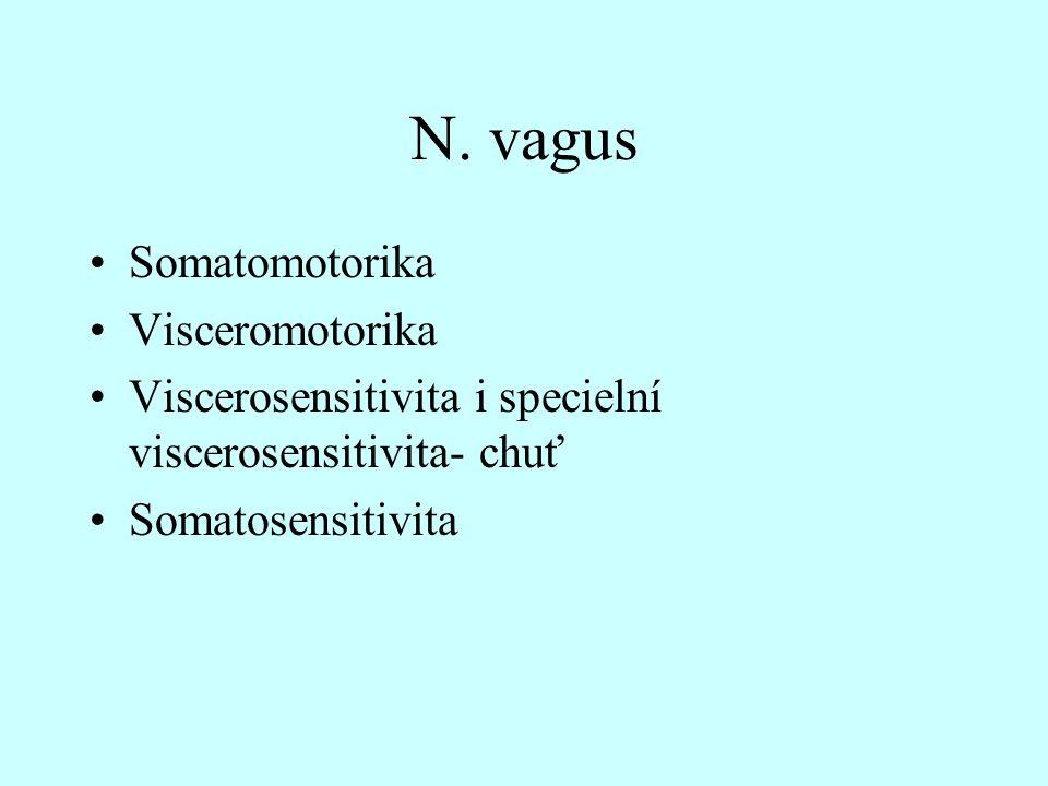 N. vagus Somatomotorika Visceromotorika Viscerosensitivita i specielní viscerosensitivita- chuť Somatosensitivita