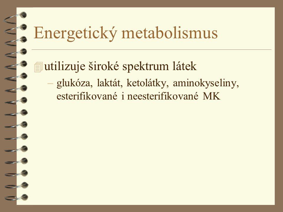 Energetický metabolismus 4 utilizuje široké spektrum látek –glukóza, laktát, ketolátky, aminokyseliny, esterifikované i neesterifikované MK