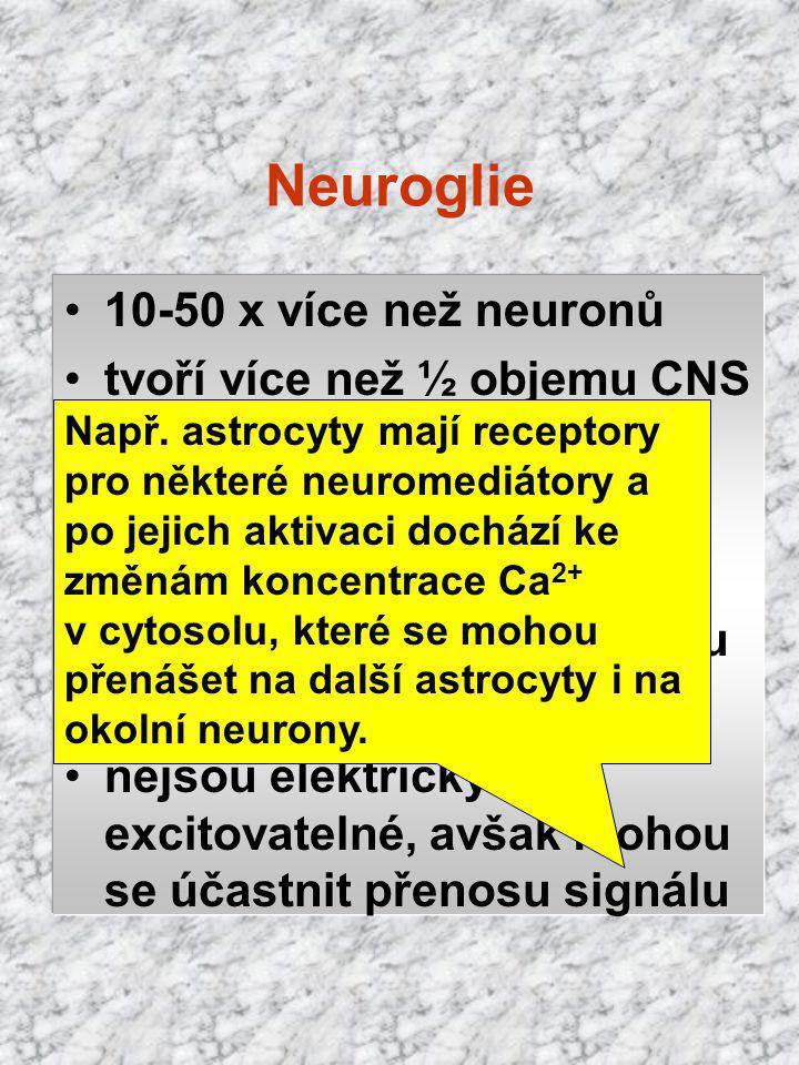 Neuroglie 10-50 x více než neuronů tvoří více než ½ objemu CNS vytvářejí myelin funkce nutritivní a fagocytární barvení: impregnace Ag, Au morfologick