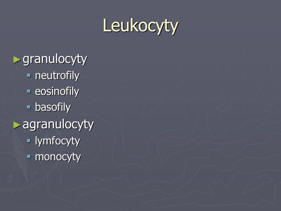 Leukocyty ► granulocyty  neutrofily  eosinofily  basofily ► agranulocyty  lymfocyty  monocyty