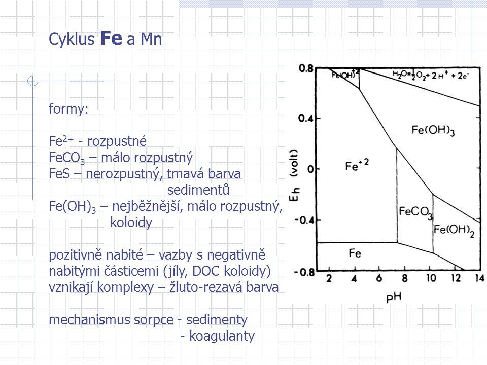 Cyklus Fe a Mn formy: Fe 2+ - rozpustné FeCO 3 – málo rozpustný FeS – nerozpustný, tmavá barva sedimentů Fe(OH) 3 – nejběžnější, málo rozpustný, koloi