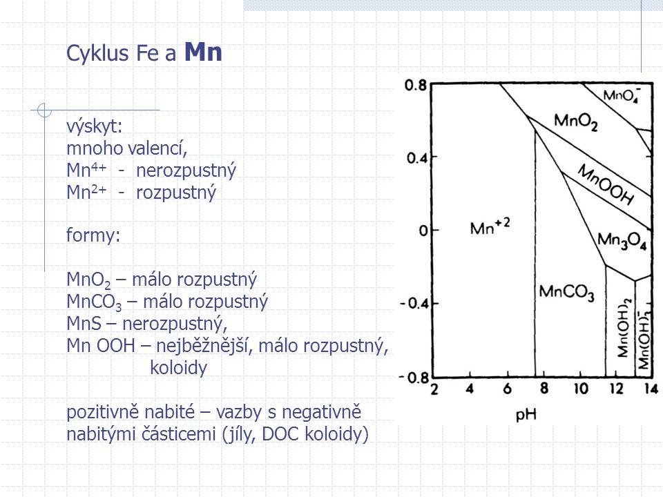 Cyklus Fe a Mn formy: MnO 2 – málo rozpustný MnCO 3 – málo rozpustný MnS – nerozpustný, Mn OOH – nejběžnější, málo rozpustný, koloidy pozitivně nabité