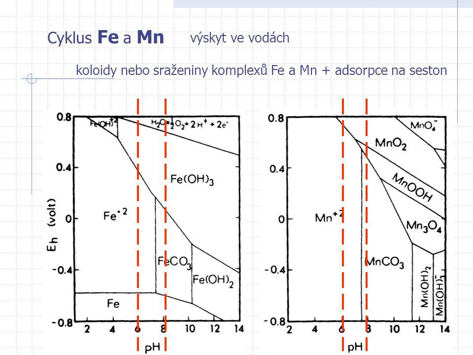 Cyklus Fe a Mn výskyt ve vodách koloidy nebo sraženiny komplexů Fe a Mn + adsorpce na seston