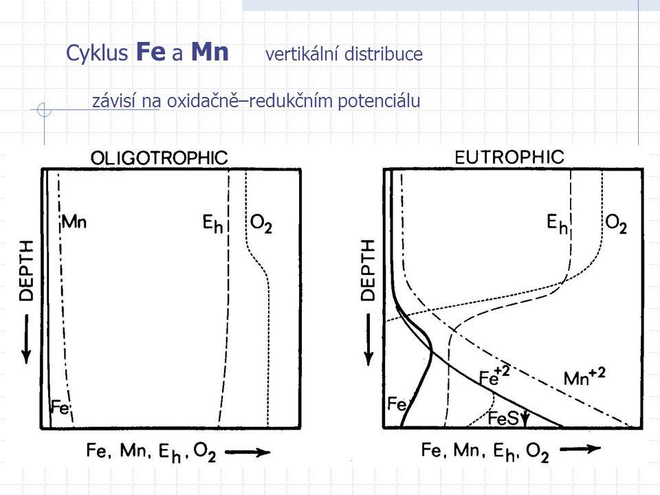 Cyklus Fe a Mn vertikální distribuce závisí na oxidačně–redukčním potenciálu