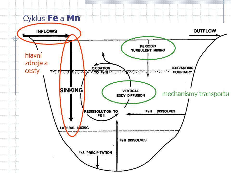 Cyklus Fe a Mn mechanismy transportu hlavní zdroje a cesty