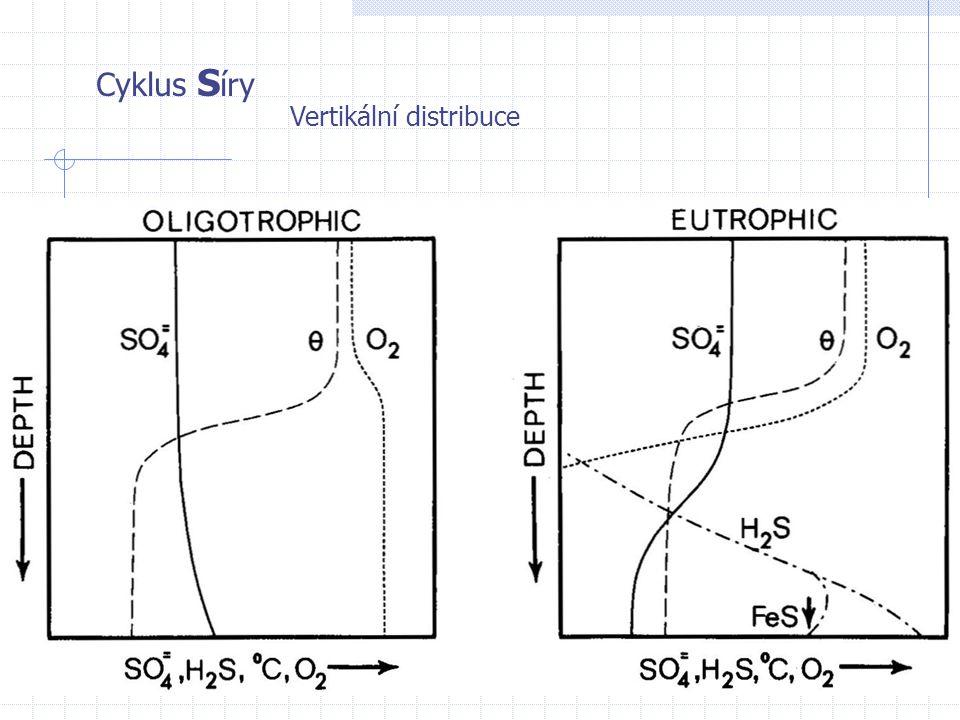 Cyklus S íry Vertikální distribuce