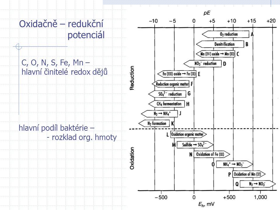 Oxidačně – redukční potenciál C, O, N, S, Fe, Mn – hlavní činitelé redox dějů hlavní podíl baktérie – - rozklad org. hmoty
