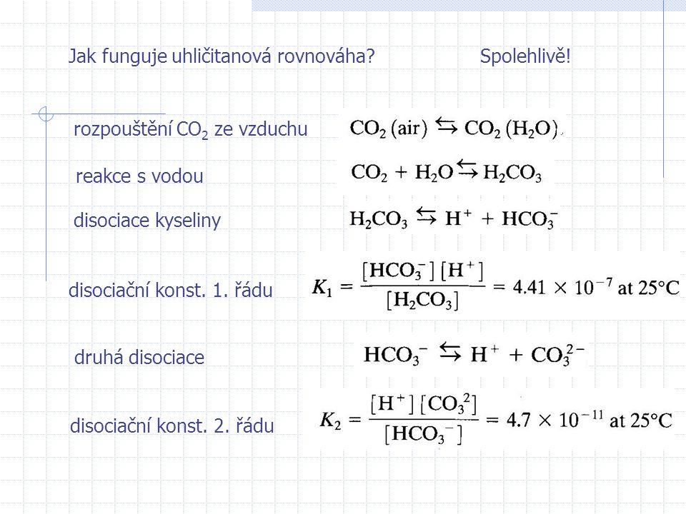 Jak funguje uhličitanová rovnováha?Spolehlivě.