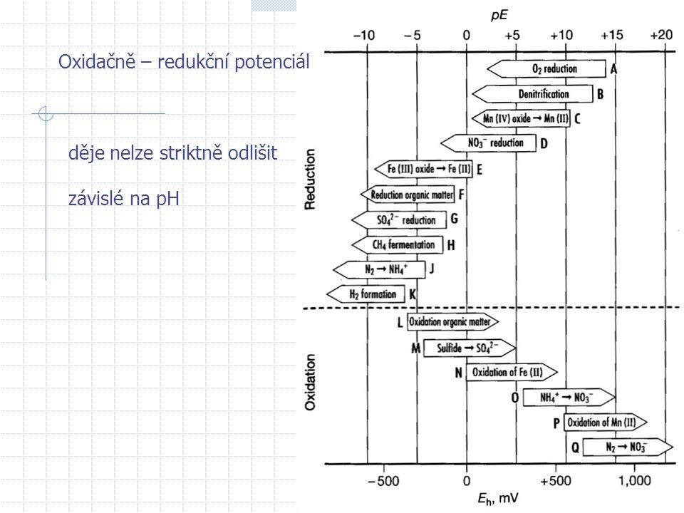 Oxidačně – redukční potenciál děje nelze striktně odlišit závislé na pH
