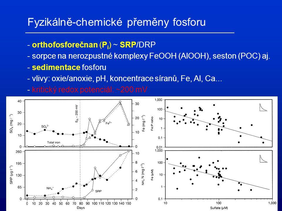 Fyzikálně-chemické přeměny fosforu - orthofosforečnan (P i ) ~ SRP/DRP - sorpce na nerozpustné komplexy FeOOH (AlOOH), seston (POC) aj. - sedimentace