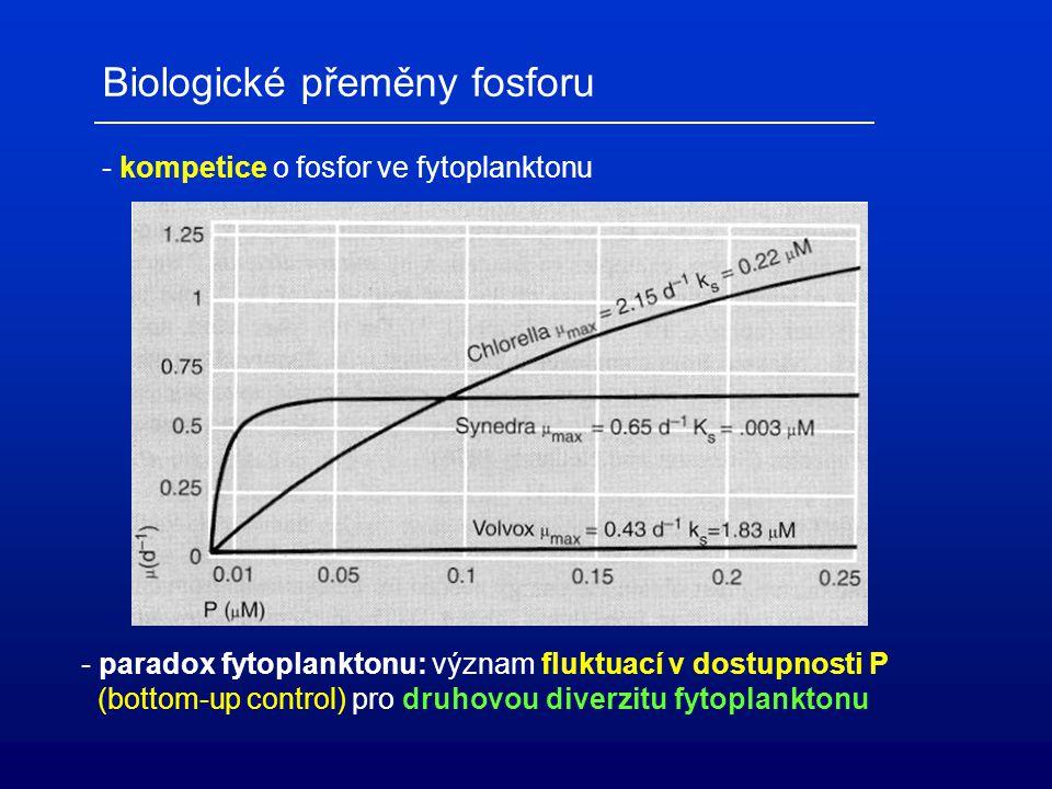 Biologické přeměny fosforu - kompetice o fosfor ve fytoplanktonu - paradox fytoplanktonu: význam fluktuací v dostupnosti P (bottom-up control) pro dru