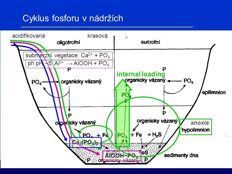 Cyklus fosforu v nádržích acidifikovaná při pH ~5: Al 3+  AlOOH + PO 4 AlOOH~PO 4 krasová submerzní vegetace: Ca 2+ + PO 4 Ca 3 (PO 4 ) 2 internal lo