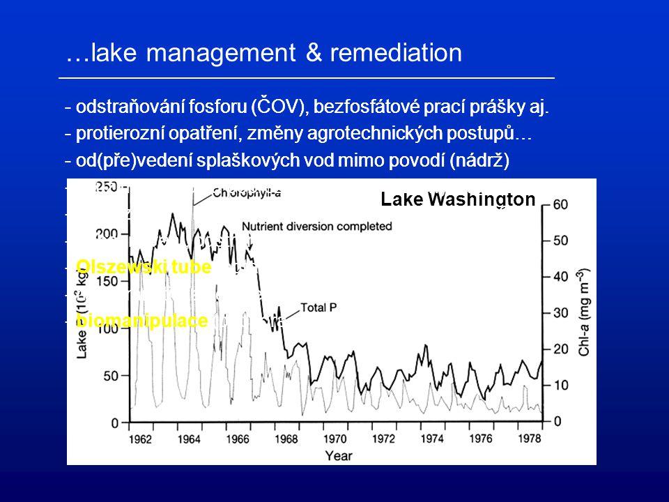 Lake Washington …lake management & remediation - odstraňování fosforu (ČOV), bezfosfátové prací prášky aj. - protierozní opatření, změny agrotechnický