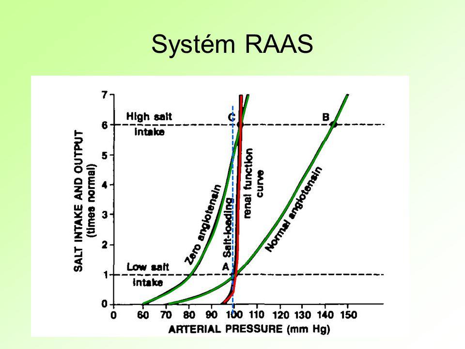 Systém RAAS