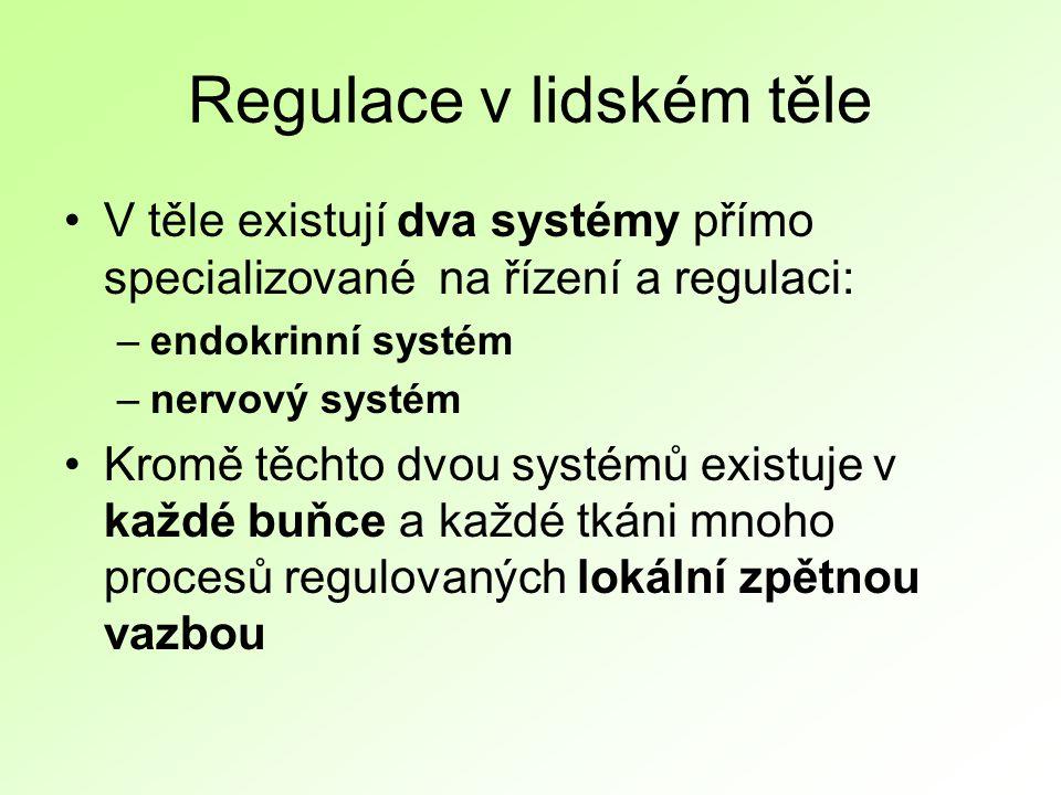 Regulace v lidském těle V těle existují dva systémy přímo specializované na řízení a regulaci: –endokrinní systém –nervový systém Kromě těchto dvou systémů existuje v každé buňce a každé tkáni mnoho procesů regulovaných lokální zpětnou vazbou
