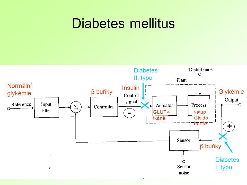 Diabetes mellitus β buňky Insulin Normální glykémie GLUT 4 tkáně Glykémie vstup Glc do buněk + - Diabetes I.