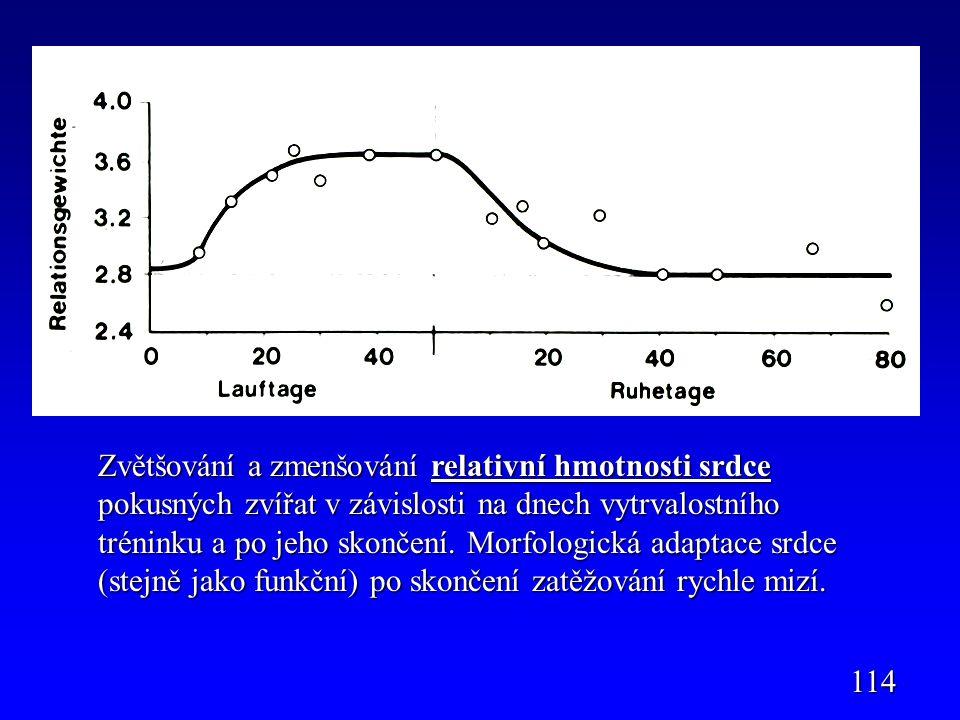 114 Zvětšování a zmenšování relativní hmotnosti srdce pokusných zvířat v závislosti na dnech vytrvalostního tréninku a po jeho skončení. Morfologická