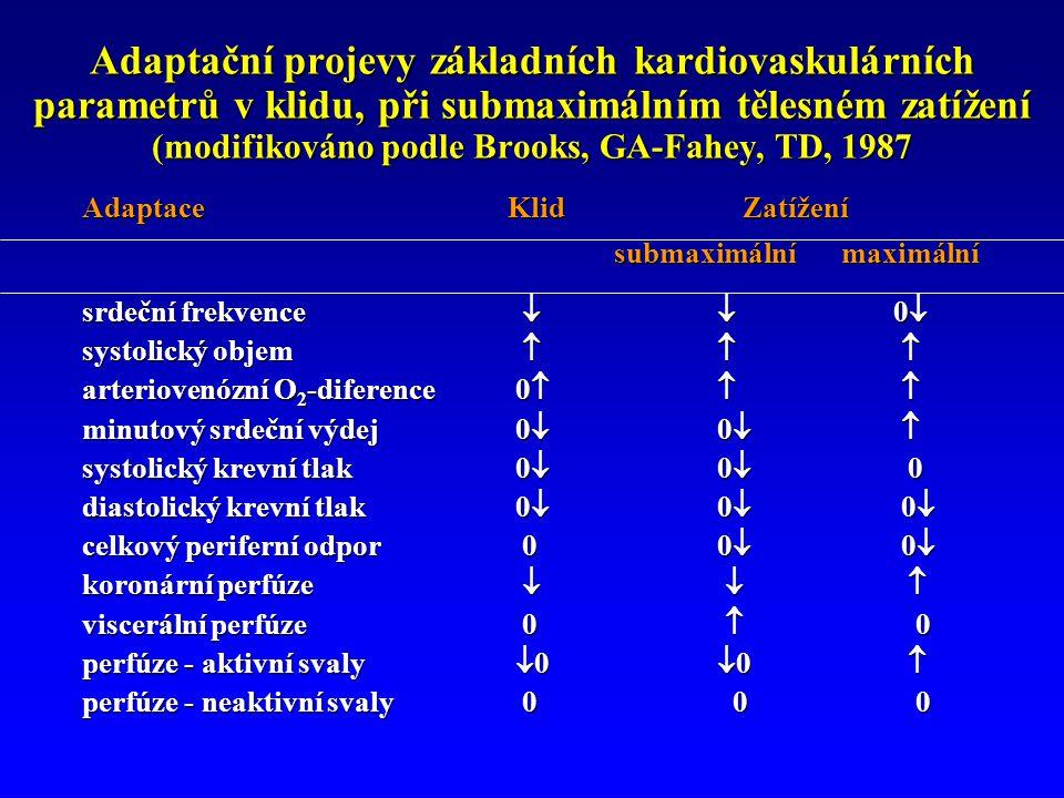 Adaptační projevy základních kardiovaskulárních parametrů v klidu, při submaximálním tělesném zatížení (modifikováno podle Brooks, GA-Fahey, TD, 1987