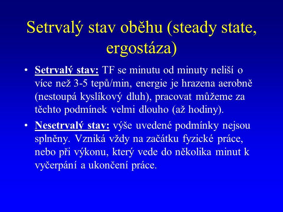 Setrvalý stav oběhu (steady state, ergostáza) Setrvalý stav: TF se minutu od minuty neliší o více než 3-5 tepů/min, energie je hrazena aerobně (nestou