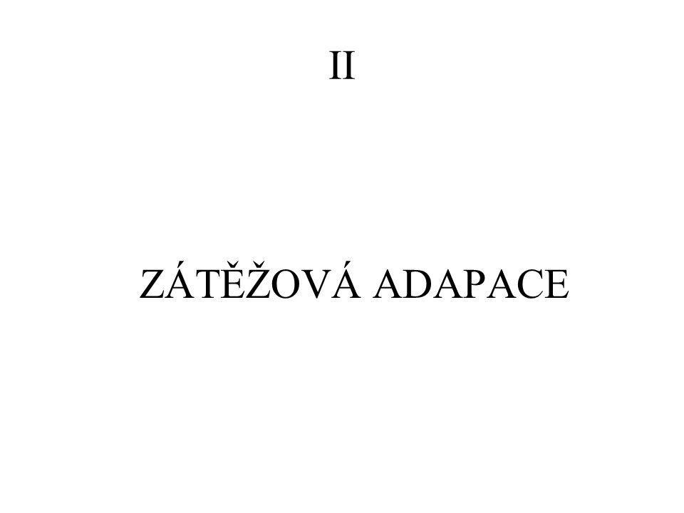 II ZÁTĚŽOVÁ ADAPACE