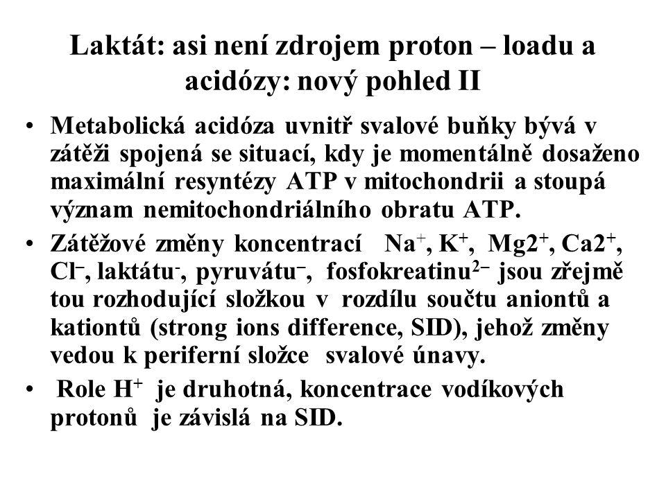 Laktát: asi není zdrojem proton – loadu a acidózy: nový pohled II Metabolická acidóza uvnitř svalové buňky bývá v zátěži spojená se situací, kdy je mo