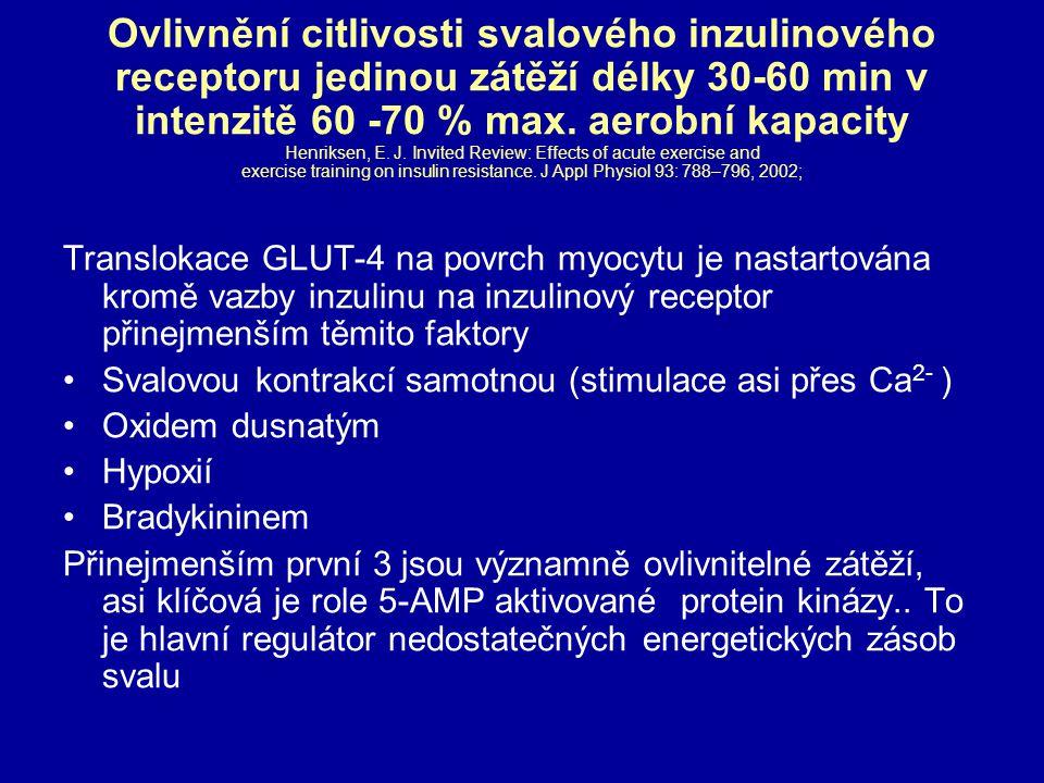 Ovlivnění citlivosti svalového inzulinového receptoru jedinou zátěží délky 30-60 min v intenzitě 60 -70 % max. aerobní kapacity Henriksen, E. J. Invit