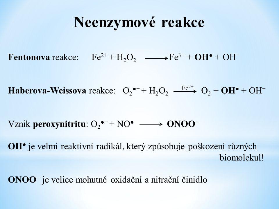 Neenzymové reakce Fentonova reakce:Fe 2+ + H 2 O 2 Fe 3+ + OH ● + OH − Haberova-Weissova reakce: O 2 ●− + H 2 O 2 O 2 + OH ● + OH − Vznik peroxynitrit