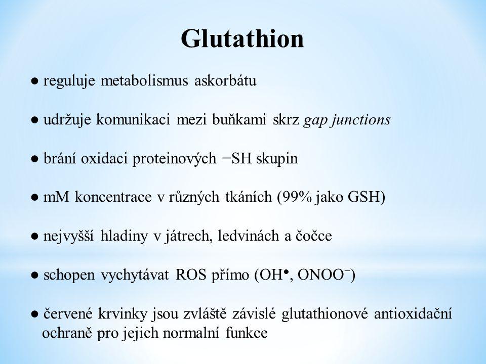 Glutathion ● reguluje metabolismus askorbátu ● udržuje komunikaci mezi buňkami skrz gap junctions ● brání oxidaci proteinových −SH skupin ● mM koncent