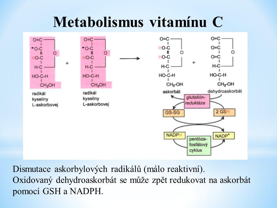 Metabolismus vitamínu C Dismutace askorbylových radikálů (málo reaktivní). Oxidovaný dehydroaskorbát se může zpět redukovat na askorbát pomocí GSH a N