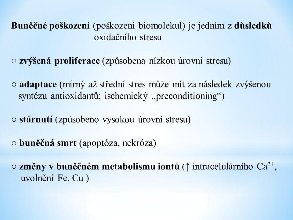 Buněčné poškození (poškození biomolekul) je jedním z důsledků oxidačního stresu ○ zvýšená proliferace (způsobena nízkou úrovní stresu) ○ adaptace (mír