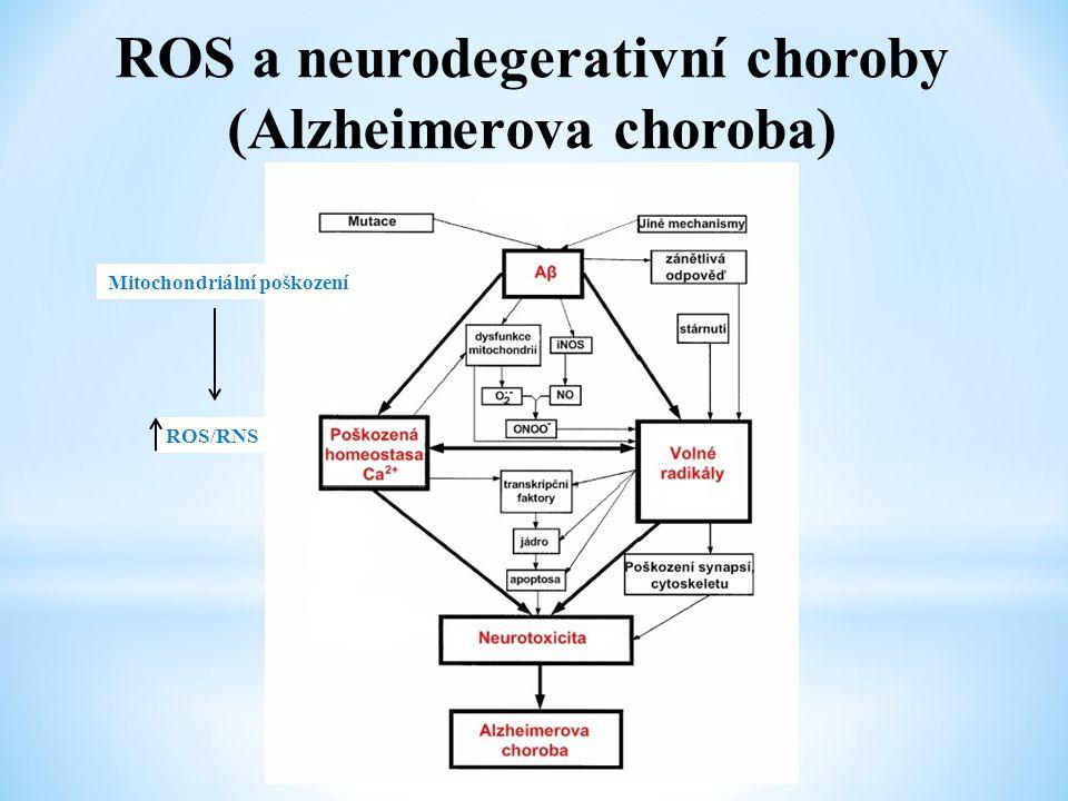 ROS a neurodegerativní choroby (Alzheimerova choroba) Mitochondriální poškození ROS/RNS