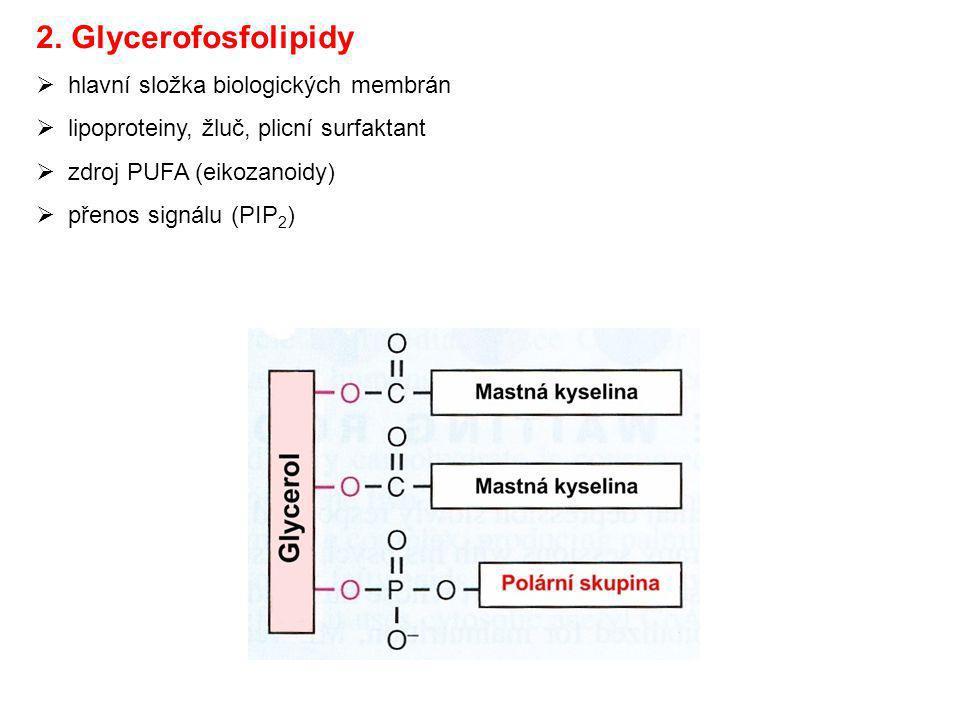 2. Glycerofosfolipidy  hlavní složka biologických membrán  lipoproteiny, žluč, plicní surfaktant  zdroj PUFA (eikozanoidy)  přenos signálu (PIP 2