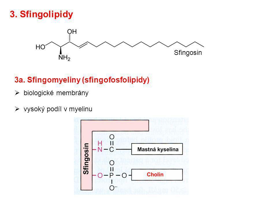 3a. Sfingomyeliny (sfingofosfolipidy)  biologické membrány  vysoký podíl v myelinu Sfingosin 3. Sfingolipidy