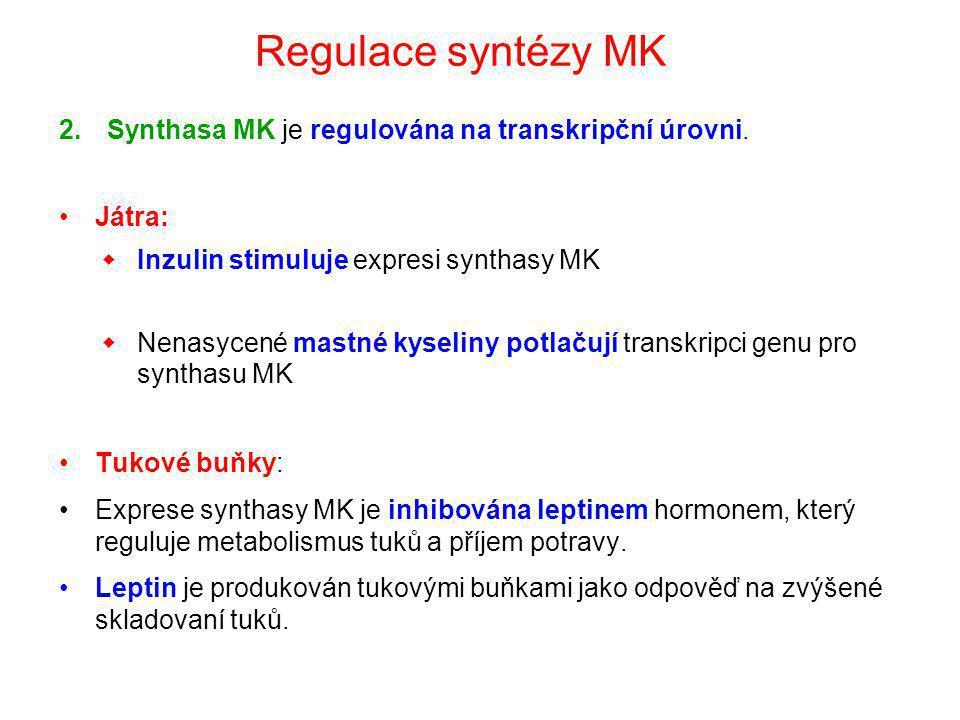 2.Synthasa MK je regulována na transkripční úrovni. Játra:  Inzulin stimuluje expresi synthasy MK  Nenasycené mastné kyseliny potlačují transkripci