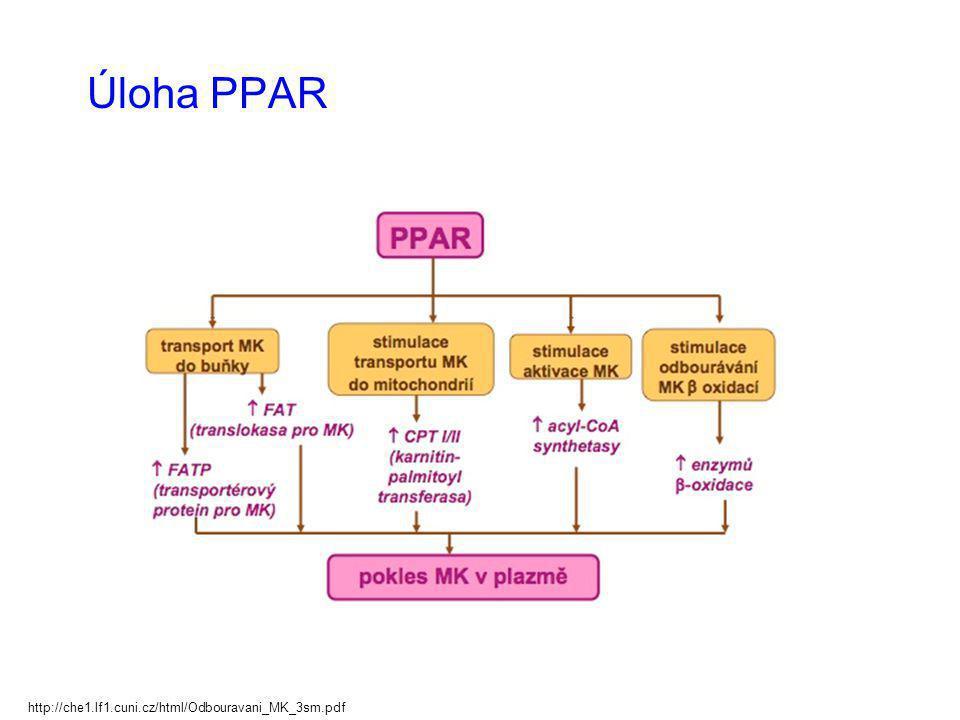 Úloha PPAR http://che1.lf1.cuni.cz/html/Odbouravani_MK_3sm.pdf