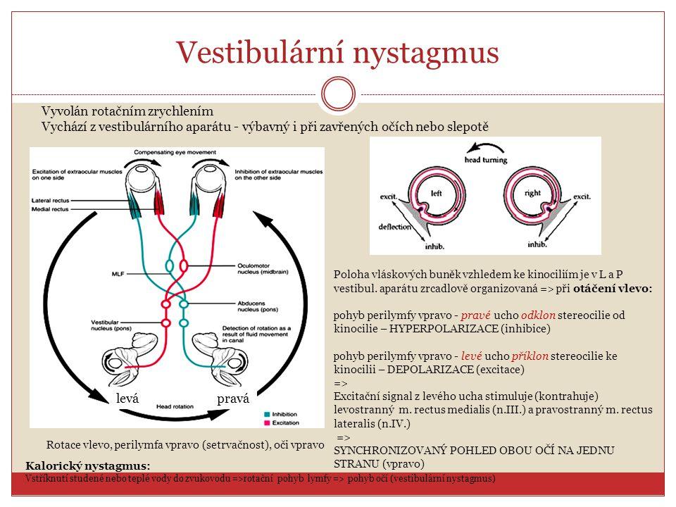 Vestibulární nystagmus Vyvolán rotačním zrychlením Vychází z vestibulárního aparátu - výbavný i při zavřených očích nebo slepotě Kalorický nystagmus: