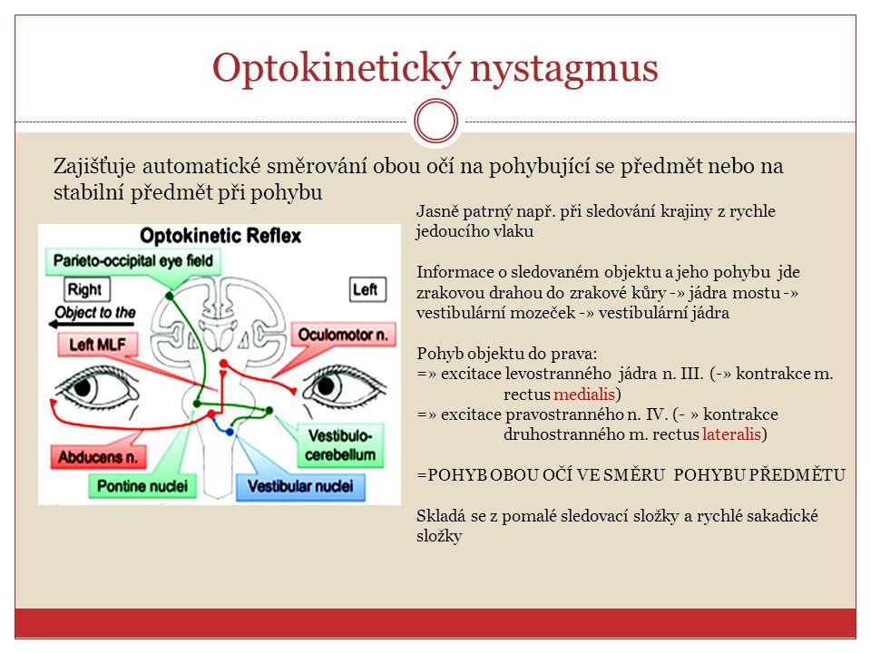 Optokinetický nystagmus Zajišťuje automatické směrování obou očí na pohybující se předmět nebo na stabilní předmět při pohybu Jasně patrný např. při s