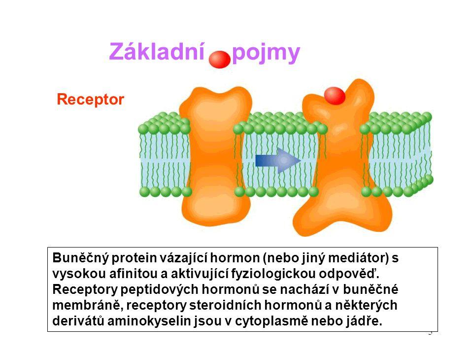 6 Malá molekula tvořená uvnitř buňky v reakci na vazbu mediátoru na membránový receptor a zprostředkovávající jeho efekty.