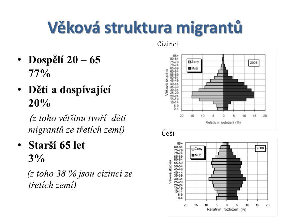 Věková struktura migrantů Dospělí 20 – 65 77% Děti a dospívající 20% (z toho většinu tvoří děti migrantů ze třetích zemí) Starší 65 let 3% (z toho 38